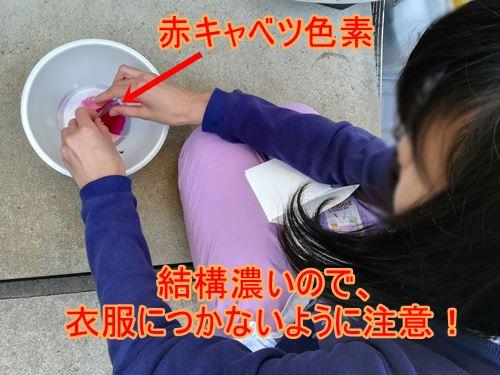 長女が赤キャベツの色素をボールに入れている写真