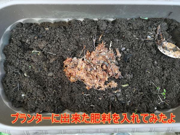 プランターに廃油肥料を入れた写真